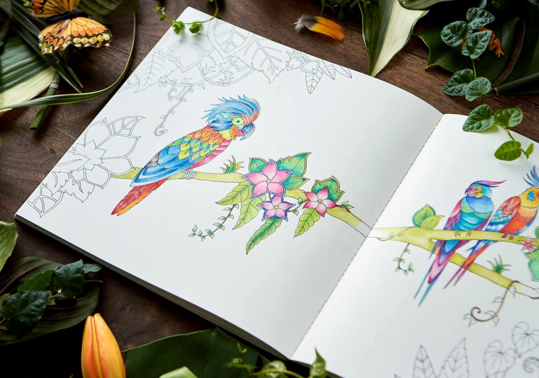 Большой каталог раскрасок для детей и взрослых